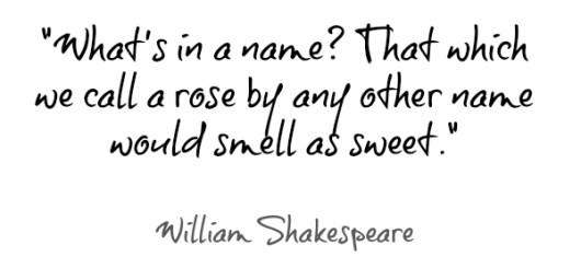 William-Shakespeare-quote-530x256.jpg